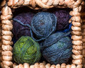 Balls of wool closeup several small rainbowcolors in the square wicker cell Royalty Free Stock Photography