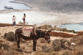 Balos beach and donkey in Crete. Mediterranean landscape. Greece Royalty Free Stock Photo