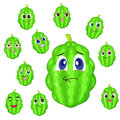 Balsam apple cartoon with many expressions