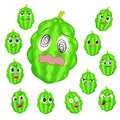 Balsam apple cartoon with many expressions Royalty Free Stock Image