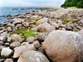 Stone boulders on the beach of the northern sea. Royalty Free Stock Photo