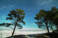 Baltic sea coast winter time Royalty Free Stock Images