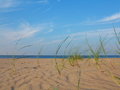 Baltic sea grassy sand dunes in the foreground with beach and water Royalty Free Stock Image