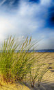 Baltic sea grassy sand dunes in the foreground with beach and water Stock Photos