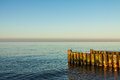 Baltic sea groynes on shore of the Royalty Free Stock Image