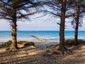 Baltic sea on shore of the Royalty Free Stock Images
