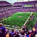 Baltimore ravens stadium football purple m t bank Stock Photo