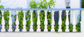 Balustrade wall a classic white and blue Royalty Free Stock Image