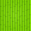Bamboo background green seamless composition Royalty Free Stock Image