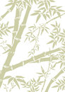 Bamboo background leaves and branches template in soft green and white Stock Image