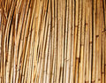 Bamboo background a with warm natural tones Stock Photos