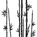 Bamboo branches isolated on the white background d vector Stock Photo