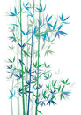 Bamboo branches or stalks in blue and green on a white background Stock Photos