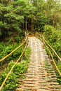 Bamboo bridge Royalty Free Stock Photos