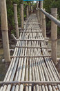 Bamboo bridge walkway with monkey Stock Photo