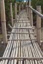 Bamboo bridge walkway with monkey Stock Photo