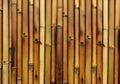 Bamboo Burn Background