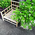 Bamboo chair and blooming plants Royalty Free Stock Photo