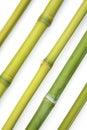 Bamboo diagonal Stock Images