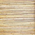 Bamboo fence background of in japanese style Stock Photo