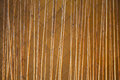 Bamboo fence close up decoration in building used as area partition Royalty Free Stock Photos