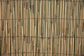 Bamboo Fence Panel Stock Photos