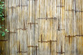 Bamboo fence with plants Royalty Free Stock Photo