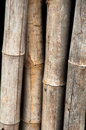 Bamboo fence Wood - texture Stock Images