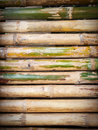 Bamboo floor Royalty Free Stock Photos