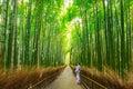 stock image of  Bamboo forest of Arashiyama near Kyoto, Japan