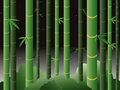 Bamboo forest at night Royalty Free Stock Photo