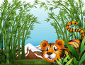 A bamboo forest with a tiger illustration of Royalty Free Stock Photography