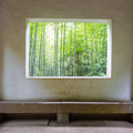 Bamboo forest through the window Stock Photography