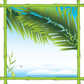 Bamboo frame with palm branches and landscape