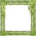 Bamboo frame. Vector background Royalty Free Stock Photography