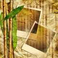 Bamboo frames Stock Photography