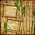 Bamboo frames Royalty Free Stock Photos