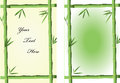 Bamboo frames two green for abstract backgrounds Stock Photography