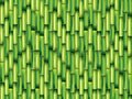Bamboo green background illustration photo realistic Royalty Free Stock Photography