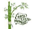 Bamboo green. Enjoy every moment card. Royalty Free Stock Photo