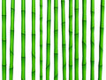 Bamboo green texture Royalty Free Stock Photography