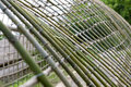 Bamboo hothouse in Korea Stock Images