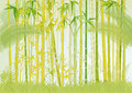 Bamboo illustration Royalty Free Stock Photo