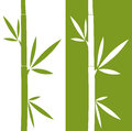 The bamboo illustration a green and white background Stock Photos