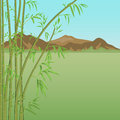 Bamboo and mountains thickets of on a background of Stock Photo
