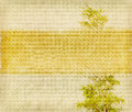 Bamboo on old grunge paper texture background Stock Photos