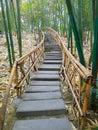 Bamboo path Royalty Free Stock Photos