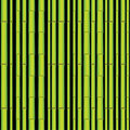 Bamboo seamless asian forest Stock Photos