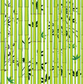 Bamboo seamless asian forest Stock Photo