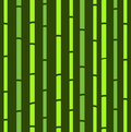 Bamboo seamless green natural retro pattern. Royalty Free Stock Photos